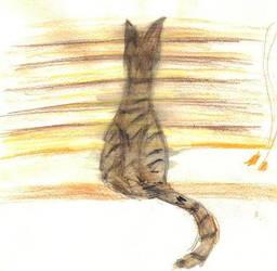 Kitty on a Windowsill by DruidElf
