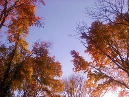 Autumn Sky by Delina91