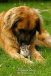 the big friend by Kirikina