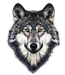 Wolves Portrait DigiArt Painting by Kirikina