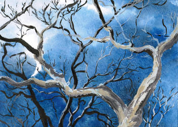 Gouache branches, watercolor sky by ShadowOfLightt