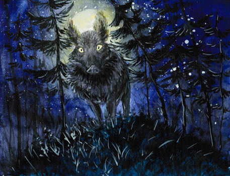 Wild boar at night by ShadowOfLightt