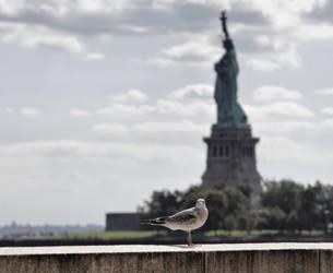 Lady Liberty by d3lf