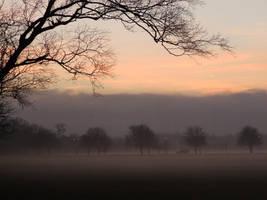 Misty Sunset by d3lf