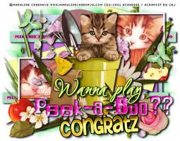 peekabooMCcdoSchnCongratz by CreativeDesignOutlet