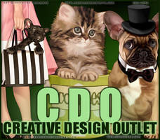 CDO Artist Of The Month August 2013 by CreativeDesignOutlet