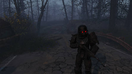 Fallout 4 - Far Harbor 05 by PlutoSkybase