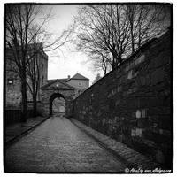 Norway 014 by AlexEdg