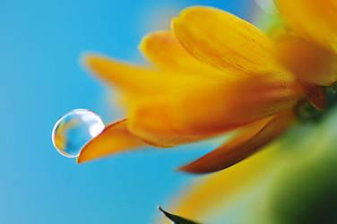 droplet 011 by AlexEdg
