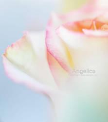 Angelica by AlexEdg