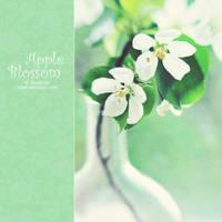 apple blossom by AlexEdg
