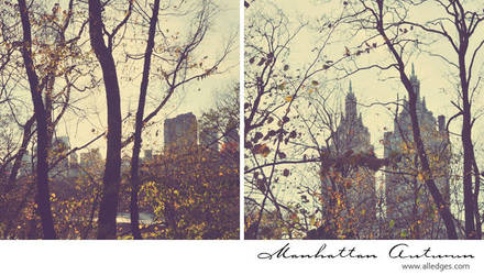Manhattan Autumn - book by AlexEdg