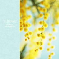 mimosa - IV by AlexEdg