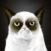 Grumpy Cat by elguapo6