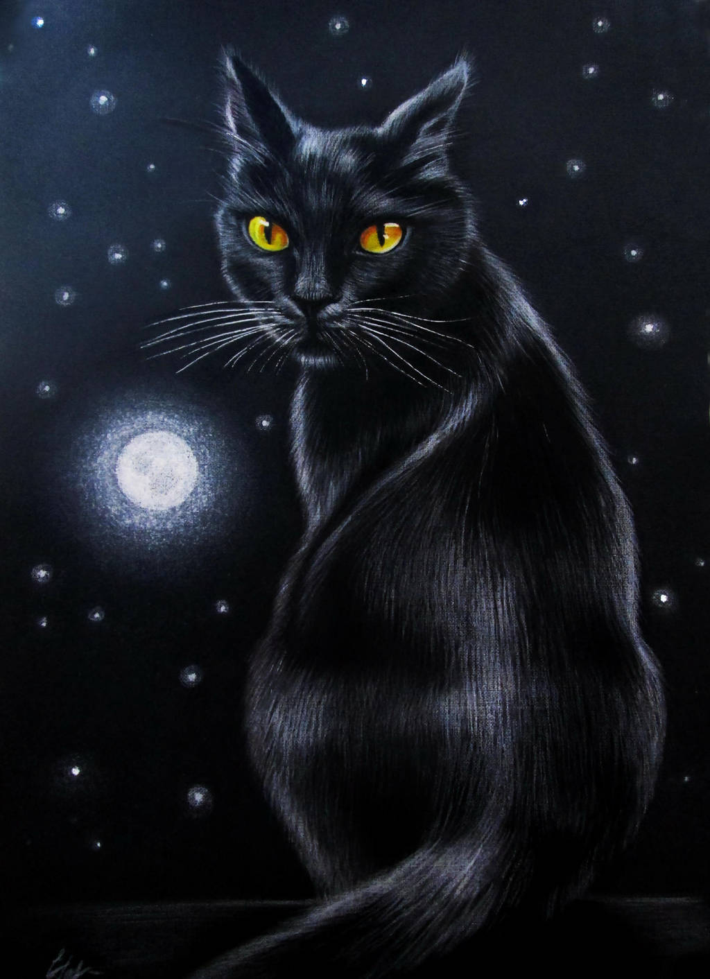 Moon Cat by evlena