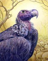 Vulture by Alanpaints