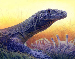Komodo Dragon by Alanpaints