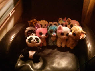 My Beanie Boo Collection by DreamNotePrincess