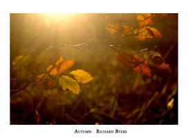 Autumn by richsabre