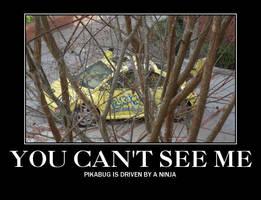 Driven by a Ninja by pikabellechu
