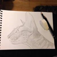 Gazelle by LittleAngy