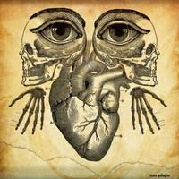 Anatomy by ShaneGallagher