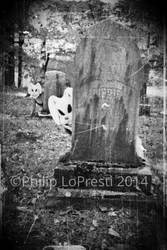 HIDE and SEEK by PhilipLoPresti