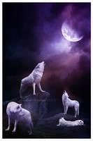 Hurlements a la lune by maelinn