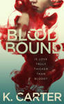 Book Cover Design for Blood Bound by ebooklaunch