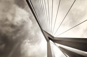 Rotterdam Bridge by Louisrose