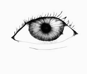 Eye by waldyrious