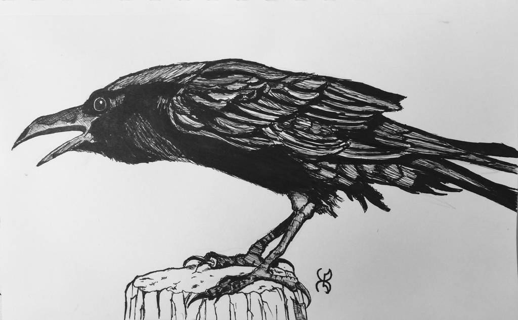 Drawlloween Day 11: Raven by Kyohazard