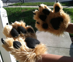 Commission - Shiloh Shepherd Paws (2) by TigeroftheWinds