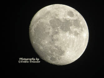 Moon 01-02-15 by debzdezigns-lamb68