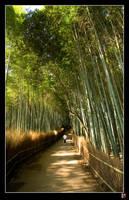 Arashiyama Jog by tensai-riot