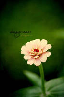 ...Because Of You... by Elegance85
