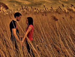 love at dawn by myhero