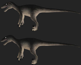 Utahraptor: Peregrine by Freeflier181