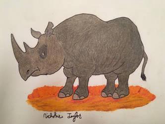 Black Rhinoceros by ntaylor24