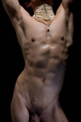 Torso by phasedbylight