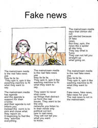 Fake news by spark300c