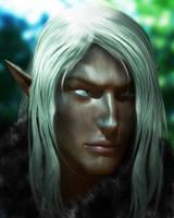 Silverleaf by Erynn83