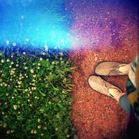 in summer park by clockorange