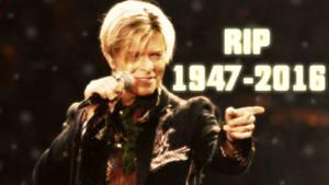 RIP David Bowie Wallpaper by SailorTrekkie92