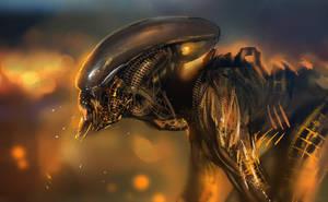 alien by Tsabo6