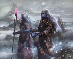 Dark elves by Tsabo6