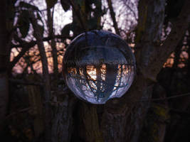 Crystaline sphere in the branches by Acrylicdreams