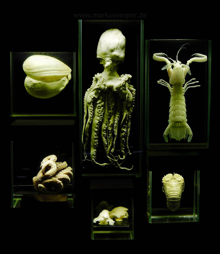 Exhibited by Acrylicdreams