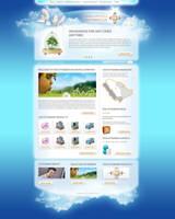 Insurance company webdesign by naranch