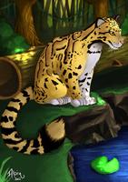 Clouded Leopard by alpin-j